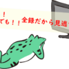 海外からガラポンTVレビュー!日本の全番組を自由に見放題できるよ